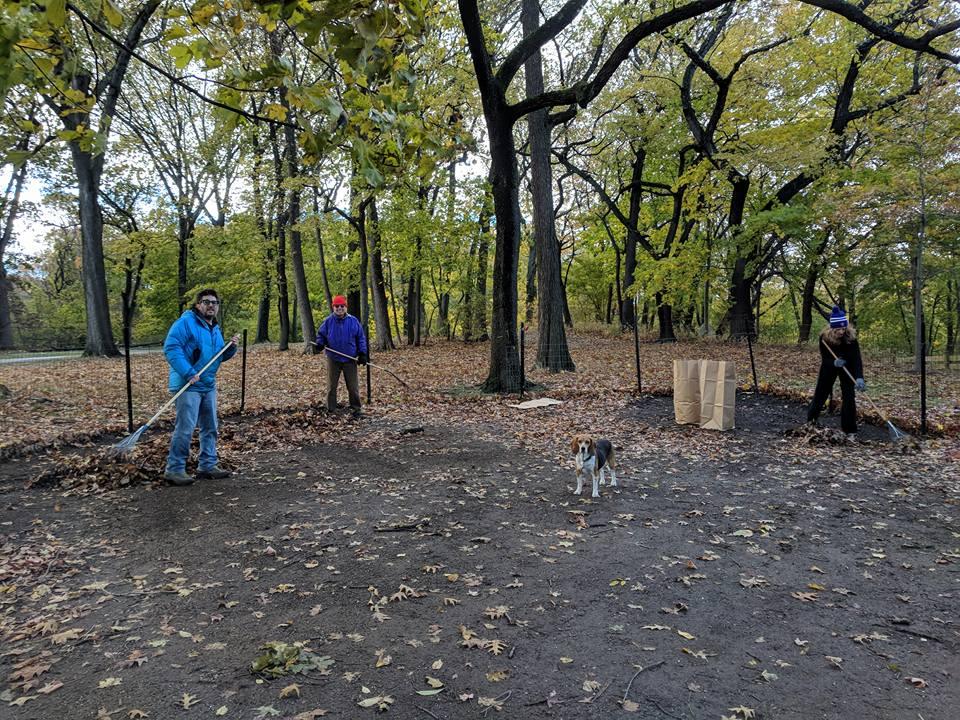 City Of Maple Grove Dog Barking